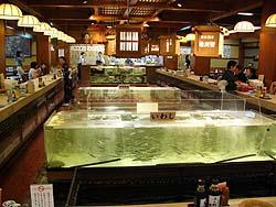 Ikesu2